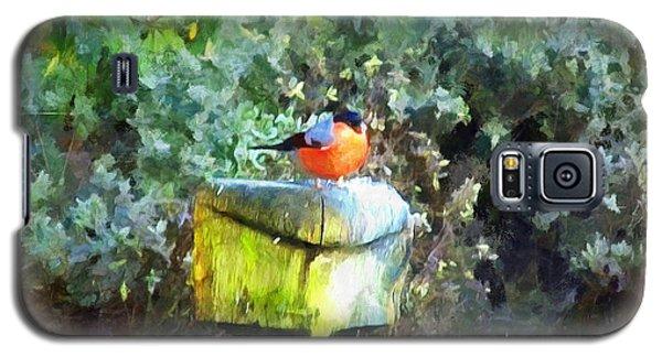 Painted Bullfinch S1 Galaxy S5 Case