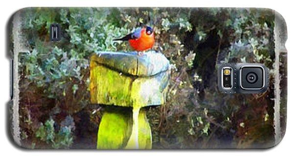 Painted Bullfinch Trio Galaxy S5 Case