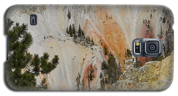 Painted Canyon At Lower Falls Galaxy S5 Case by Michele Myers