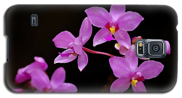 Galaxy S5 Case featuring the photograph Painted Ground Orchids by Lorenzo Cassina