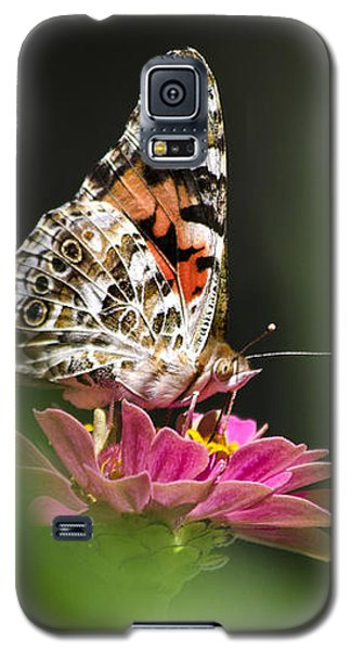 Galaxy S5 Case featuring the photograph Painted Lady Butterfly At Rest by Christina Rollo