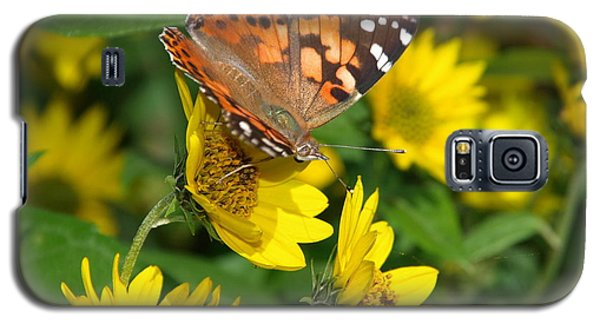 Galaxy S5 Case featuring the photograph Painted Lady by James Peterson
