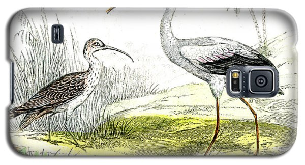 Painted Storks Galaxy S5 Case by Collection Abecasis