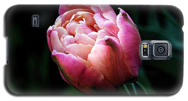 Painted Tulip Galaxy S5 Case