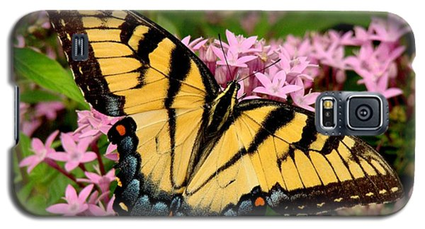 Painted Wings Galaxy S5 Case