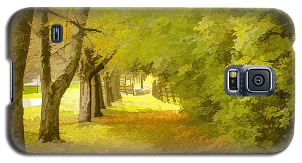 Painterly Pathway Galaxy S5 Case by Jim Lepard