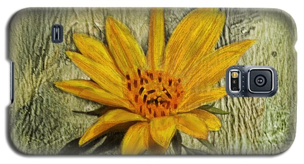 Painterly Sunflower Galaxy S5 Case by Sandi OReilly