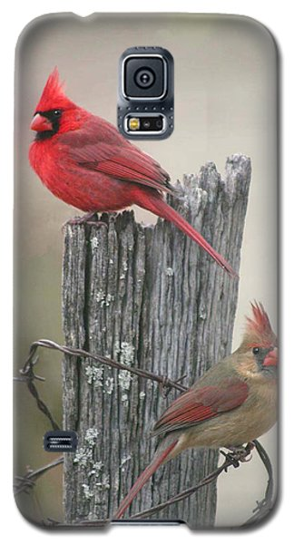 Pair Of Cards Galaxy S5 Case by Robert Camp