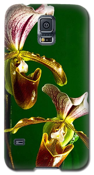 Galaxy S5 Case featuring the photograph Pair Of Lady Slipper Orchids by Elf Evans
