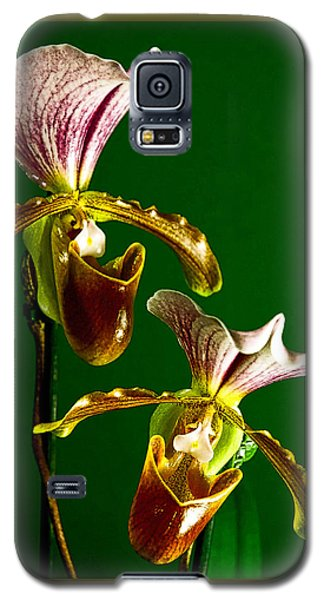Pair Of Lady Slipper Orchids Galaxy S5 Case