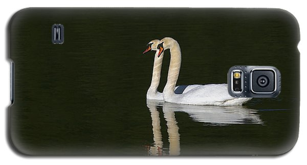 Pair Of Mute Swans Galaxy S5 Case