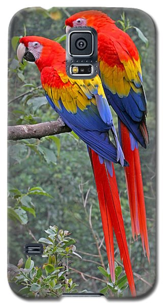 Galaxy S5 Case featuring the photograph Pair Of Scarlet Mackaws by Peggy Collins