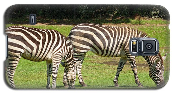 Galaxy S5 Case featuring the photograph Pair Of Zebras by Charles Beeler