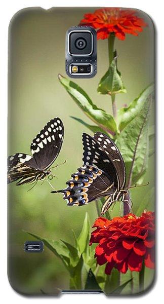 Palamedes Swallowtail Butterflies Galaxy S5 Case