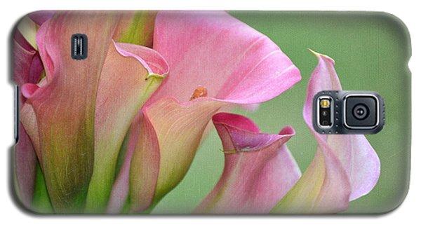 Pale Pink Blush Galaxy S5 Case