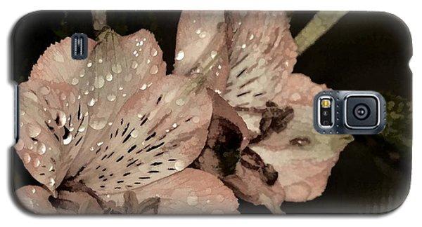 Pale Pink Lilies On Dark Background Galaxy S5 Case