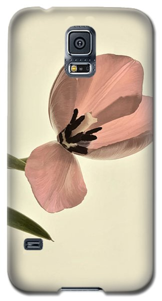 Pale Pink Tulip Galaxy S5 Case