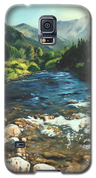 Palisades Creek  Galaxy S5 Case by Lori Brackett