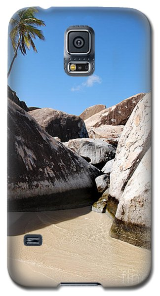 Palm At The Baths Virgin Islands Galaxy S5 Case