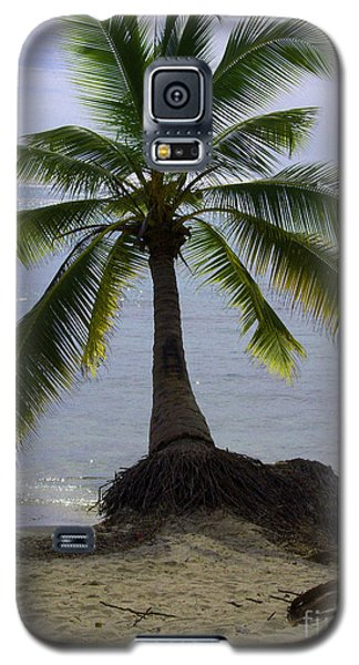Palm At The Edge Of The Sea Number Two Galaxy S5 Case by Heather Kirk