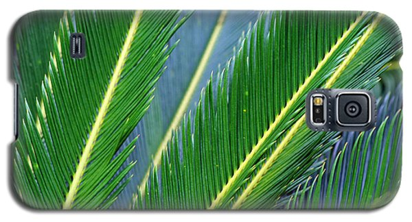 Palm Cycas Fronds Galaxy S5 Case