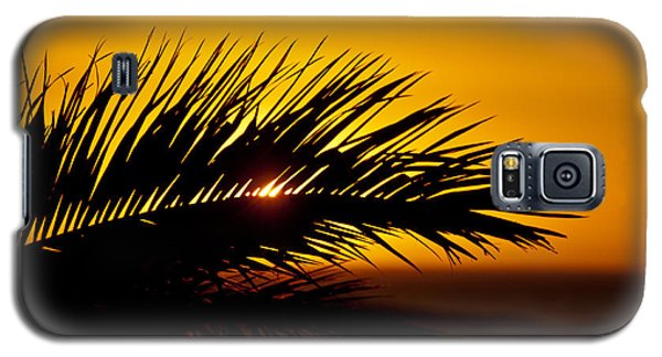 Galaxy S5 Case featuring the photograph Palm Leaf In Sunset by Yngve Alexandersson