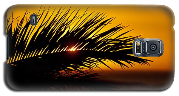 Palm Leaf In Sunset Galaxy S5 Case