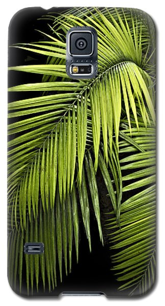 Palm Leaves Galaxy S5 Case