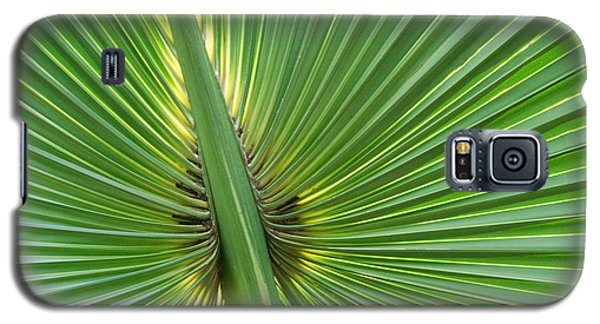Galaxy S5 Case featuring the photograph Palm Love by Roselynne Broussard