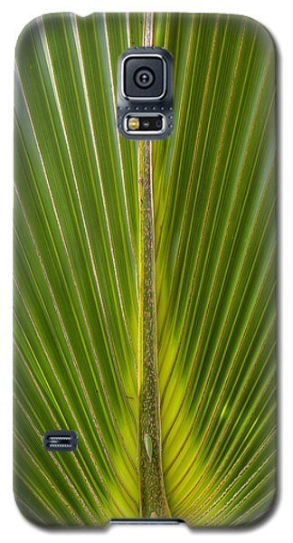 Palm Reader Galaxy S5 Case