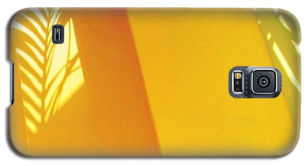 Palm Shadow On Yellow Wall - Square Galaxy S5 Case