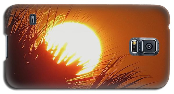 Galaxy S5 Case featuring the photograph Palm Sunday by Nikki McInnes