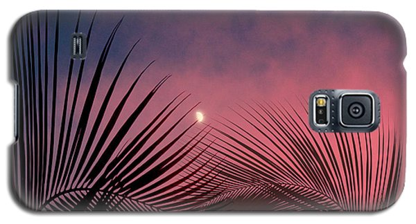 Palm Sunset Galaxy S5 Case by Megan Dirsa-DuBois