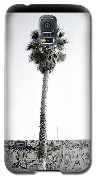 Palm Tree And Graffiti Galaxy S5 Case