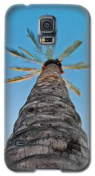 Galaxy S5 Case featuring the photograph Palm Tree Looking Up by Maggy Marsh