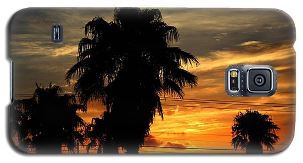 Palm Tree Silhouette Galaxy S5 Case