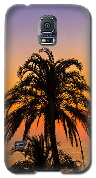 Palm Tree Sunset Vertical Galaxy S5 Case