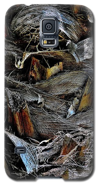Palm Tree Trunk - Darwin - Australia Galaxy S5 Case