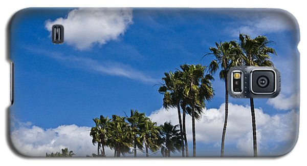 Palm Trees In San Diego California No. 1661 Galaxy S5 Case by Randall Nyhof