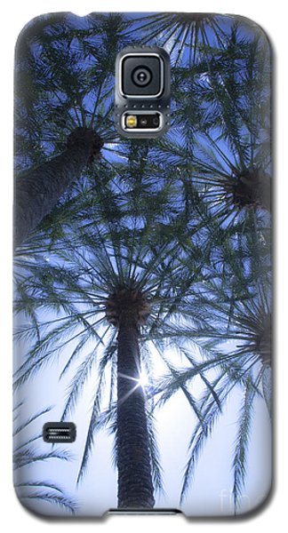 Galaxy S5 Case featuring the photograph Palm Trees In The Sun by Jerry Cowart
