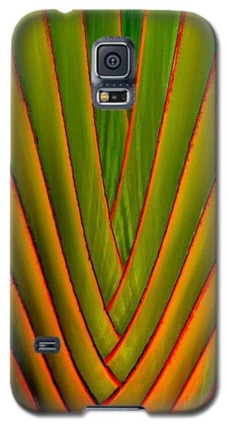 Palm Weave Fine Galaxy S5 Case