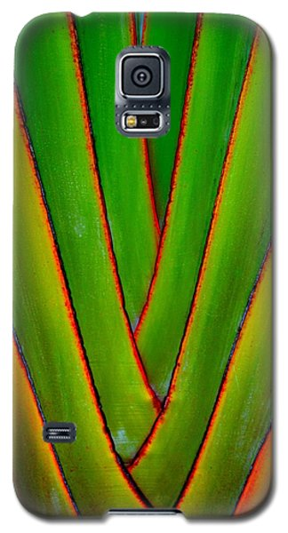 Palm Weave Grande Galaxy S5 Case