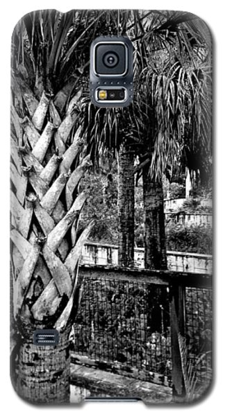 Palms And Walls In Black And White Galaxy S5 Case