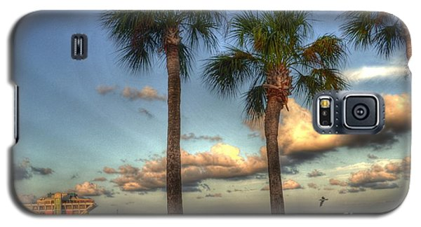 Galaxy S5 Case featuring the photograph Palms At The Pier by Timothy Lowry