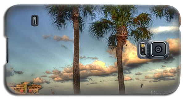 Palms At The Pier Galaxy S5 Case by Timothy Lowry
