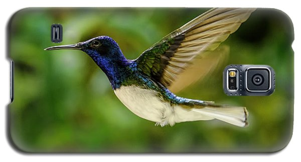 Galaxy S5 Case featuring the photograph Panama Hummingbird by Rob Tullis