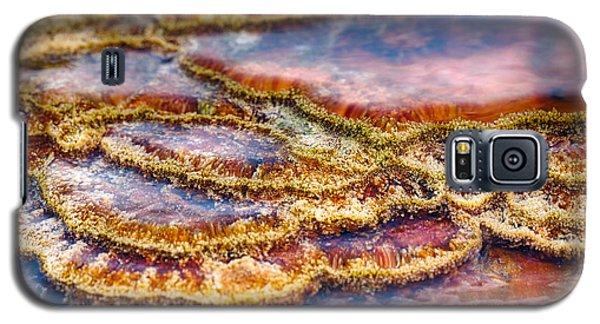 Pancakes Hot Springs Galaxy S5 Case
