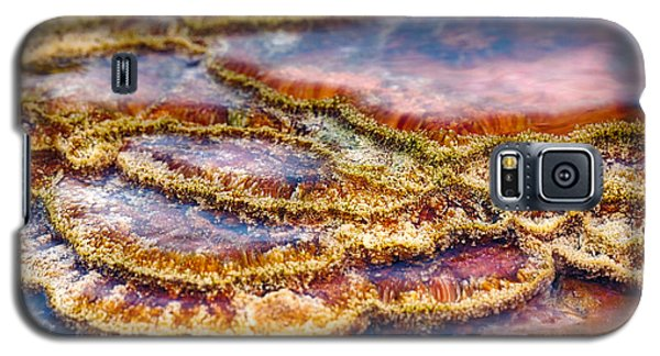 Pancakes Hot Springs Galaxy S5 Case