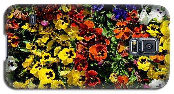 Pansy Color Mix  Galaxy S5 Case