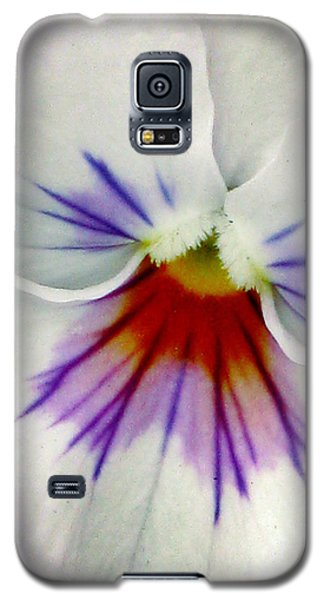 Pansy Flower 11 Galaxy S5 Case
